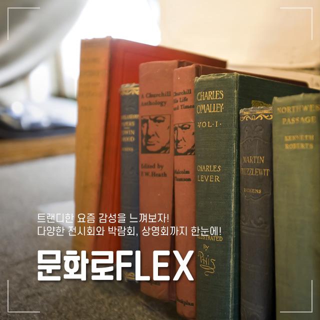 문화로FLEX